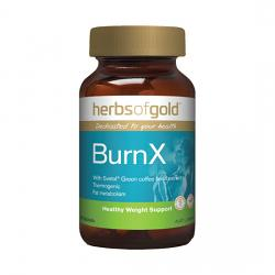 Herbs of Gold BurnX